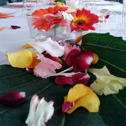 matrimonio fiorista rubiera cadelbosco reggio-emilia