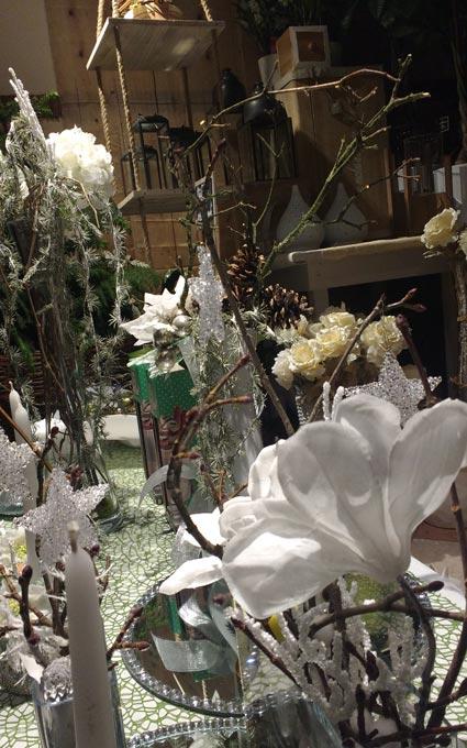 Idee regalo per il Natale, Fiorista a Mantova